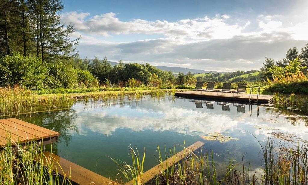 5 razloga zašto su prirodni bazeni bolji od veštačkih